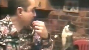 Deze man is doof en de manier waarop zijn kat met hem communiceert is buitengewo