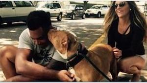 Een jongeman gaat naar het asiel en vraagt om een hond die niemand wil hebben. W