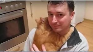 Wat deze kat doet, ontkracht alle mythen rond deze dieren!
