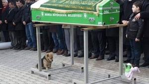 Deze hond zat met zeer droevige ogen bij de doodskist... Niemand had verwacht wa