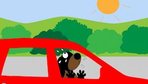 Als je in de hitte een hond in een wagen ziet, moet je zo reageren!