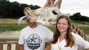 24 grappige photobombing door dieren! We kunnen niet stoppen met lachen :)
