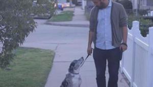 De man neemt een oudere hond uit het asiel in huis. Na het zien van deze video h