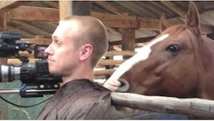 Het paard keek naar zijn slachtoffer en viel hem dan aan op de grappigste manier