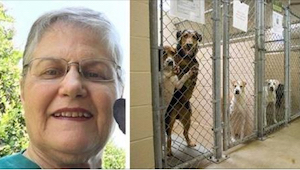 De oudere vrouw vroeg aan het asiel om een hond die niemand wou. Kijk met wie ze