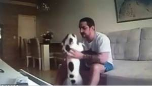 Sinds haaer verloofde bij haar was ingetrokken, gedroegen haar honden zich vreem