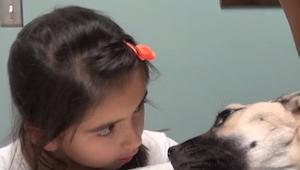 Een meisje keek een stervende hond in de ogen, wat er toen gebeurde is ongewoon.
